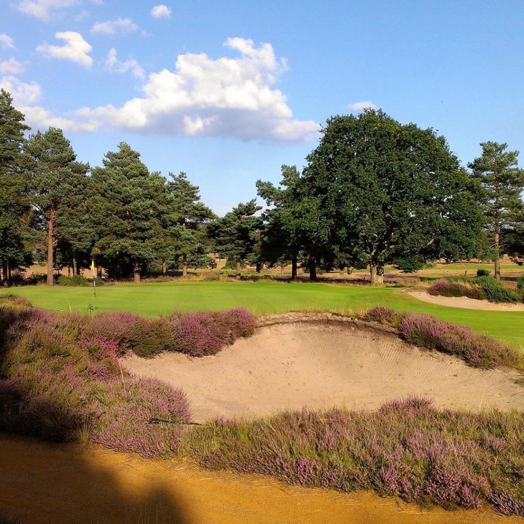 Heathland time again Today Hankley Common Farnham England golf golfcoursehellip