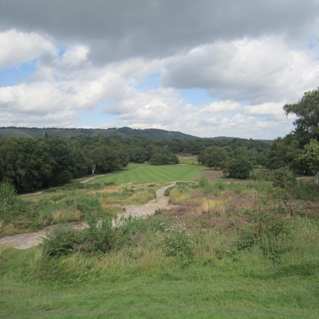 Reigate Heath Surrey A hidden gem south of the Mhellip