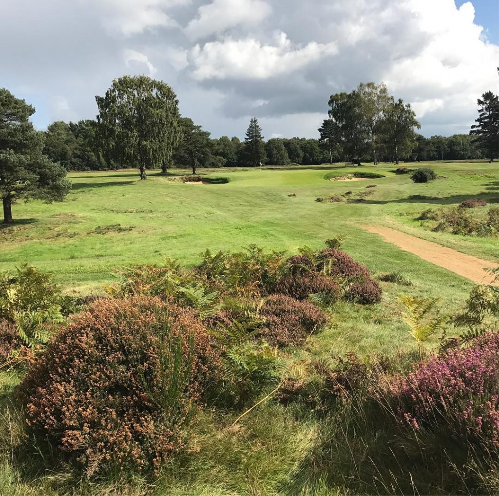 Walton Heath Old Course Hole 17 A lovely Par 3hellip