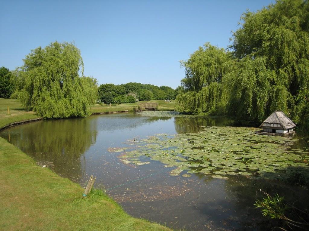 Teich an Loch 15
