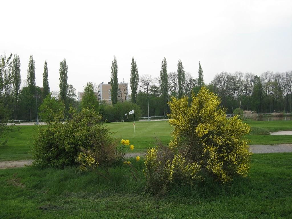 Blick aufs Grün Loch 7
