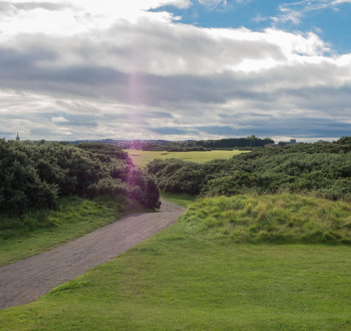 Montrose Golf Links, Loch 11