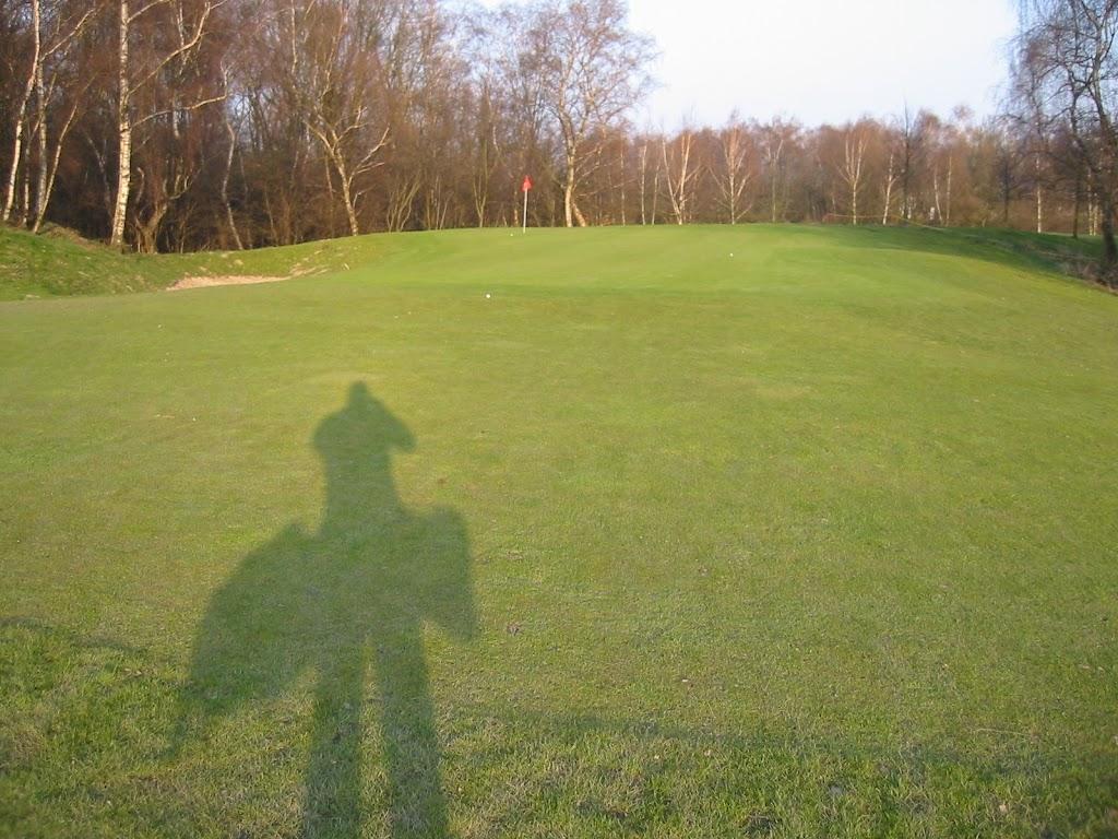 Der Reisgolfer vor dem Grün Loch 8